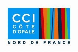 logo ccico