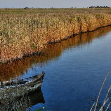 Baignade interdite dans les canaux : rappel à la vigilance