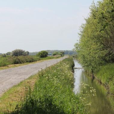La gestion de l'eau : une priorité